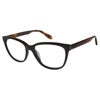 Aristar AR 18434 Eyeglasses